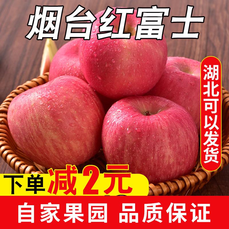 红富士苹果水果新鲜10斤批整箱烟台当季脆甜10斤冰糖心吃的苹果图片