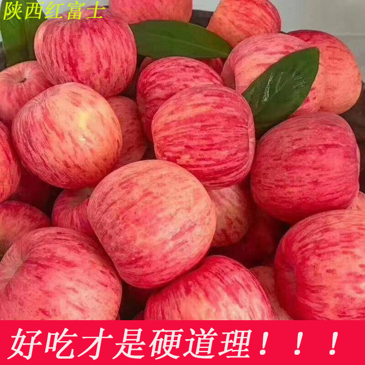 Apple fruit is crisp and sweet, fresh, big fruit, Red Fuji, 10 jin, Shaanxi Baishui apple, packed and mailed