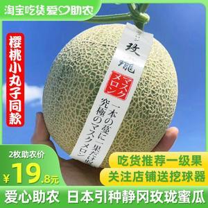 玫珑蜜瓜引种日本静冈夕张2枚装4.5~5斤网纹瓜新鲜水果甜瓜哈密瓜