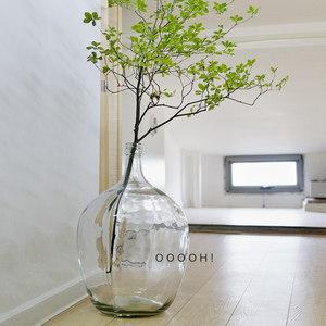 ooooh北欧ins手工大肚瓶透明玻璃花瓶大号酒瓶状落地花瓶