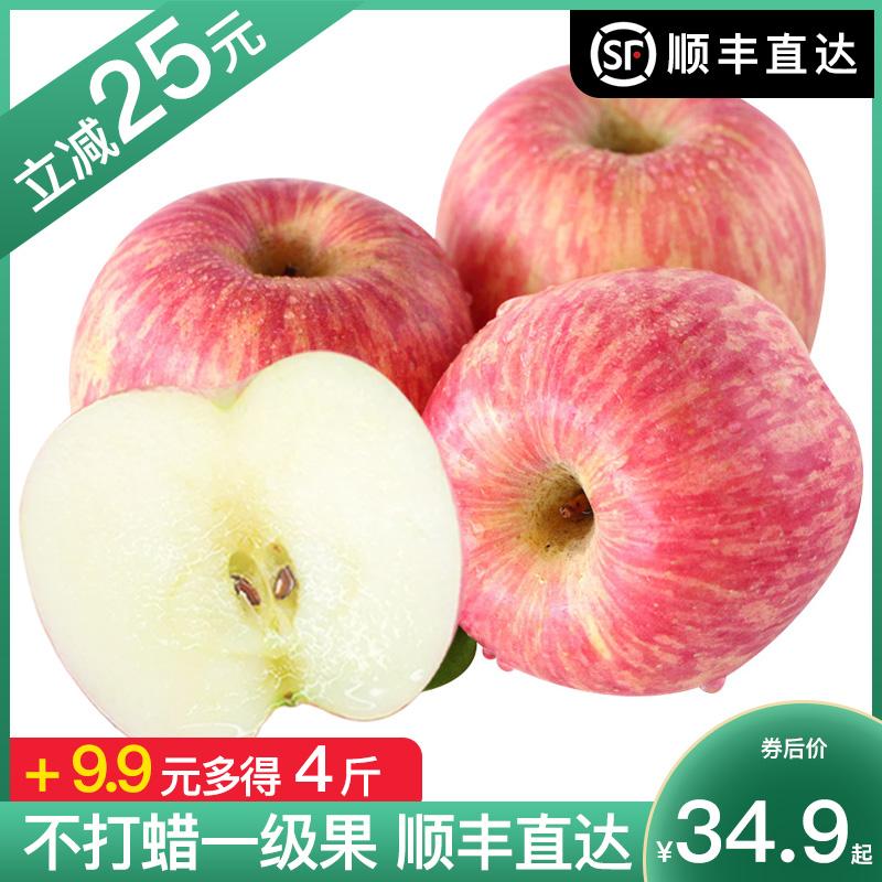 烟台红富士一级山东栖霞特产新鲜水果约10斤不打蜡脆甜红苹果5斤图片