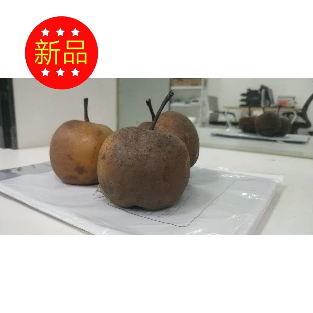 兰州什川特产新鲜软儿梨水果化心果永宁坊特卖10斤软儿梨顺丰包邮