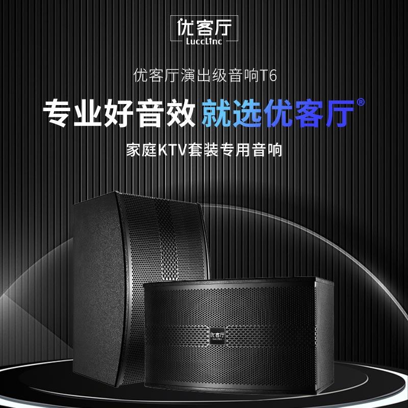 You living room D5 family KTV sound set home audio karaoke set karaoke power amplifier speaker