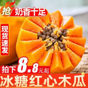 广西冰糖红心木瓜新鲜3水果现摘木瓜5牛奶冰糖心木瓜孕妇水果10斤