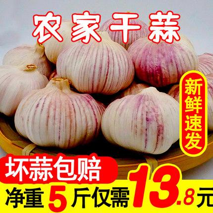 精选干大蒜头新鲜干蒜5斤中小果紫白皮农家自种祘头独头蒜瓣种子