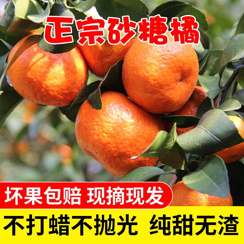 广西砂糖橘沙糖桔新鲜带箱子皇帝柑