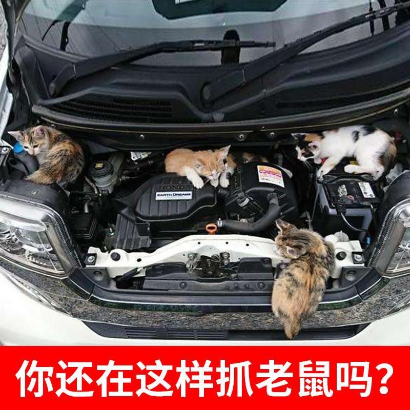 汽车驱鼠剂车用驱鼠器发动机舱专用驱鼠仓防老鼠驱赶包药防鼠神器