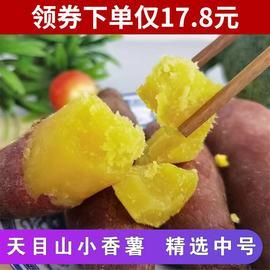 临安天目山小香薯5斤新鲜红薯正宗板栗小番薯10斤地瓜蜜山芋番薯