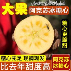 新疆阿克苏冰糖心苹果应当季水果新鲜10斤整箱包邮红富士丑脆苹果