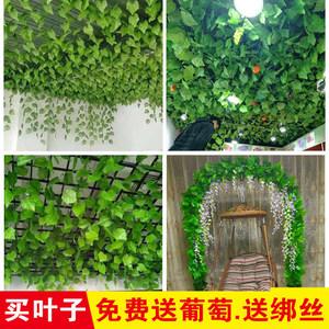 植物树叶塑料管道绿叶吊顶叶装饰缠绕真藤蔓藤条葡萄花藤绿假花