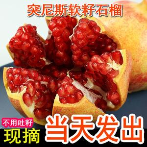 四川会理突尼斯软籽石榴10斤水果新鲜包邮无籽当季整箱子仔红斤甜