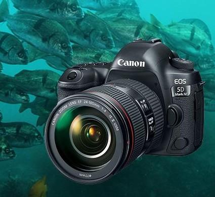 佳能5D Mark IV 5D3 5D4单机 5DIV 5DS 5DSR 全画幅 专业单反相机