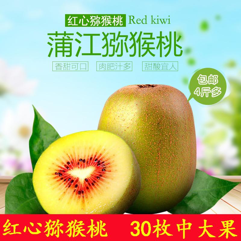 四川特产蒲江红心猕猴桃新鲜水果奇异果非苍溪紫云黄心绿心5斤装