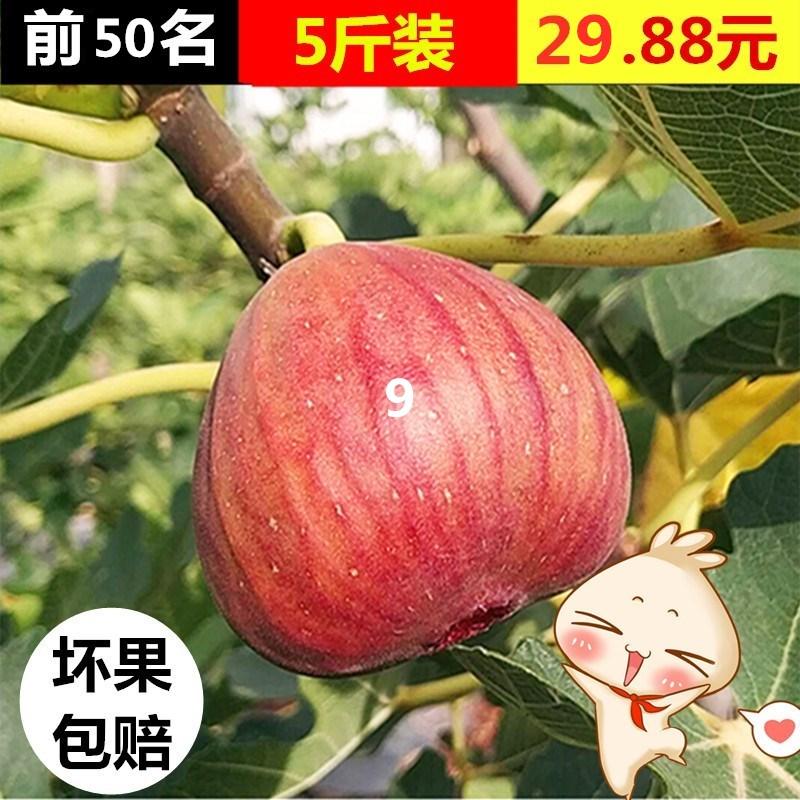 农家现摘红皮新鲜无花果孕妇水果5斤装带箱