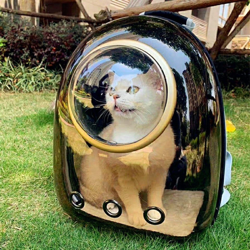 猫包外出双肩包太空舱宠物包装猫背包猫咪外出包便携太空包透明包