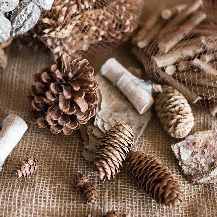 掬涵 森林的礼物 果实装饰DIY 松果松塔树枝桂皮ZAKKA道具