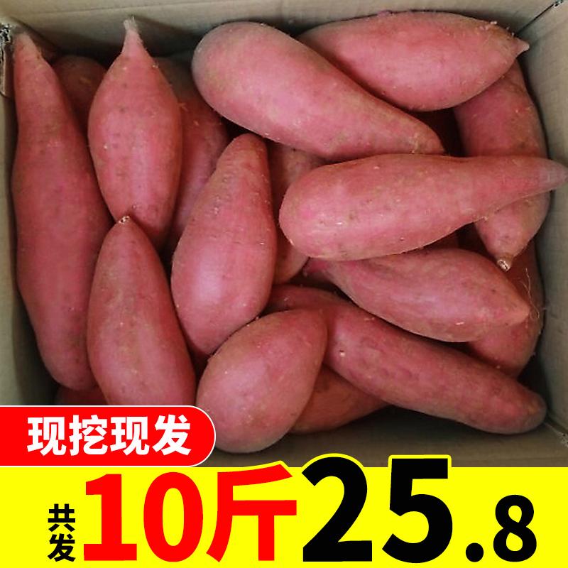 新鲜红薯10斤农家香甜西瓜红蜜薯板栗薯地瓜糖心番薯山芋沙地红薯