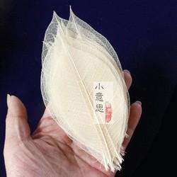 植物树叶 橡胶叶 干花制作叶脉标本书签100片 原色