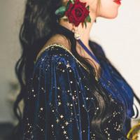 弥爱原创 银河II 宫廷复古烫金丝绒连衣裙秋冬维多利亚灯笼袖长裙