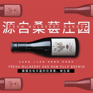 桑椹红酒原汁发酵干型红酒187毫升网红小酒非葡萄酒男女干红 果酒