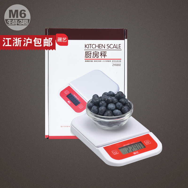 厨房电子秤迷你台秤食品秤电子称烘焙工具ZY0202