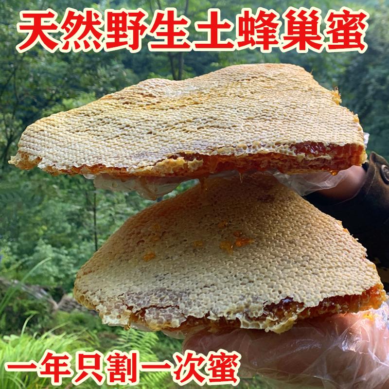 野生蜂巢蜜嚼着吃纯正天然土蜂蜜巢块农家自产盒装峰老巢蜜槽蜂窝