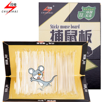 8 Piece of lightning sticky Mouse Board strong adhesive plate adhesive grab mouse sticker cage drug catcher Rat Rodenticide