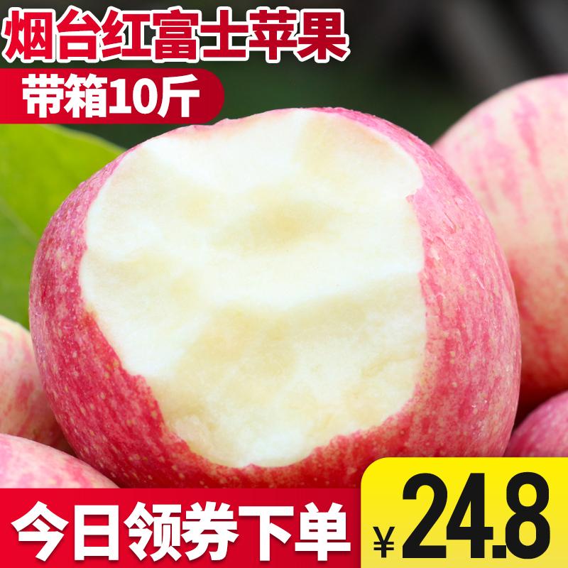 山东烟台红富士新鲜当季苹果脆甜多汁孕妇水果 整箱10斤坏果包赔假一赔十