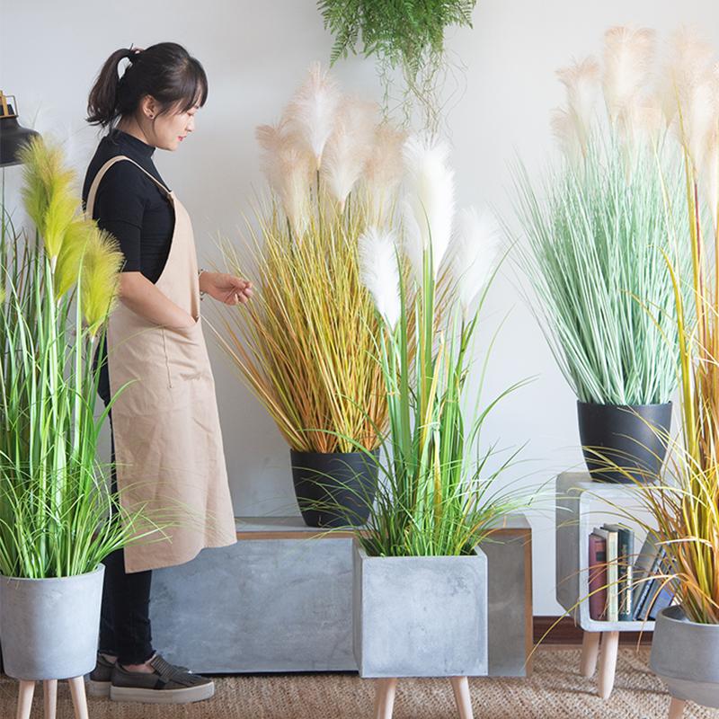 七茉仿真植物芦苇大型盆栽狗尾洋葱假草香蒲落地绿植北欧家居摆件