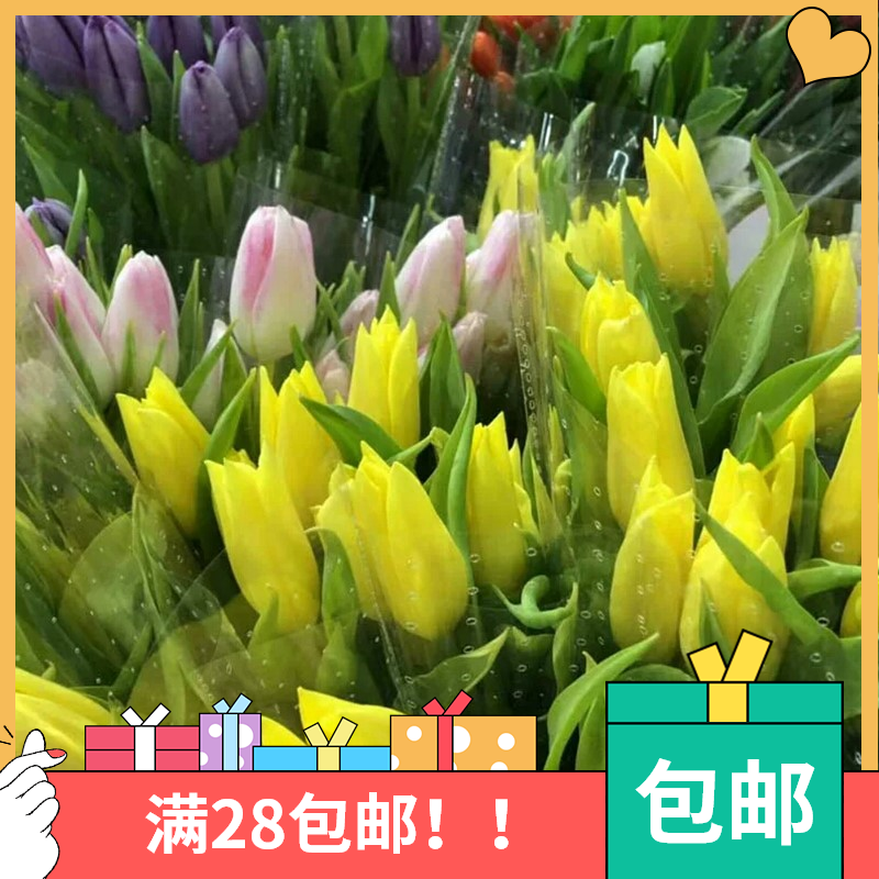 Send tulip flowers, send herbs, send preservatives, send fresh cut flowers to others, send them by express delivery