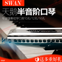 Swan semi-scale harmonica SW1040 beginner playing 12 hole 48 tone SW1248 Professional 16 hole 64 tone 1664