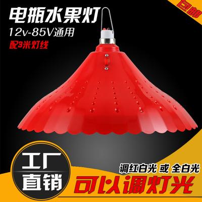 充电应急灯 12V低压生鲜水果猪肉灯 48v夜市摆地摊灯 led电瓶灯