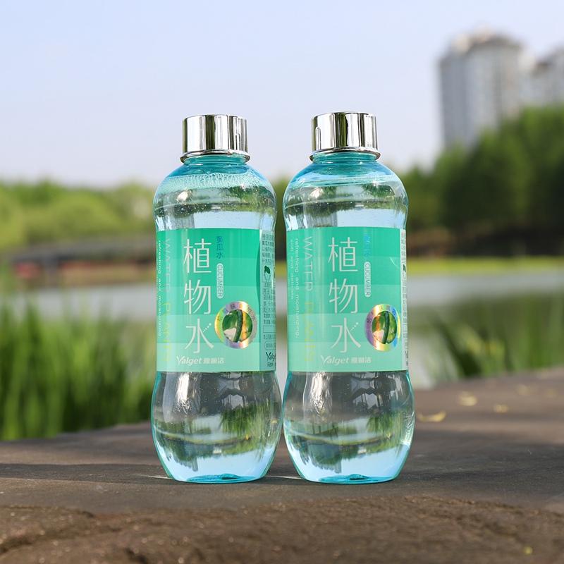 2瓶装雅丽洁植物水补水官网黄瓜水