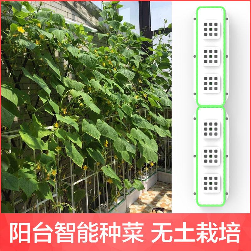 インテリジェント家庭内のPVCの野菜鉢のベランダの菜園のビルの屋上の野菜を栽培する設備の屋上のプラスチックの長い条
