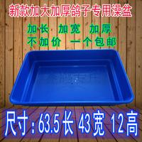 Голубиный голубь для Большие ванны Голубь ванна ванна голубь поставляет оборудование голубь окунь стенд