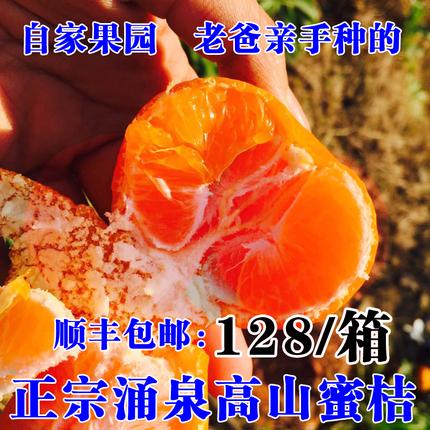 尹小姐 精品蜜桔 临海涌泉蜜桔黄岩蜜桔新鲜水果早熟宫川桔子蜜橘
