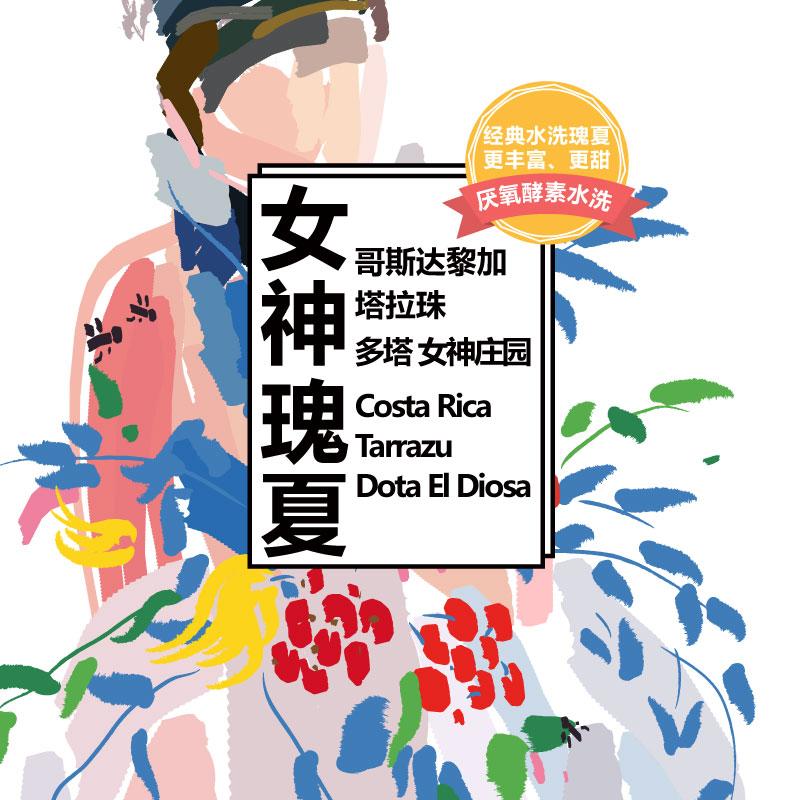 新品哥斯达黎加多塔女神庄园厌氧酵素水洗瑰夏精品手冲咖啡豆100g
