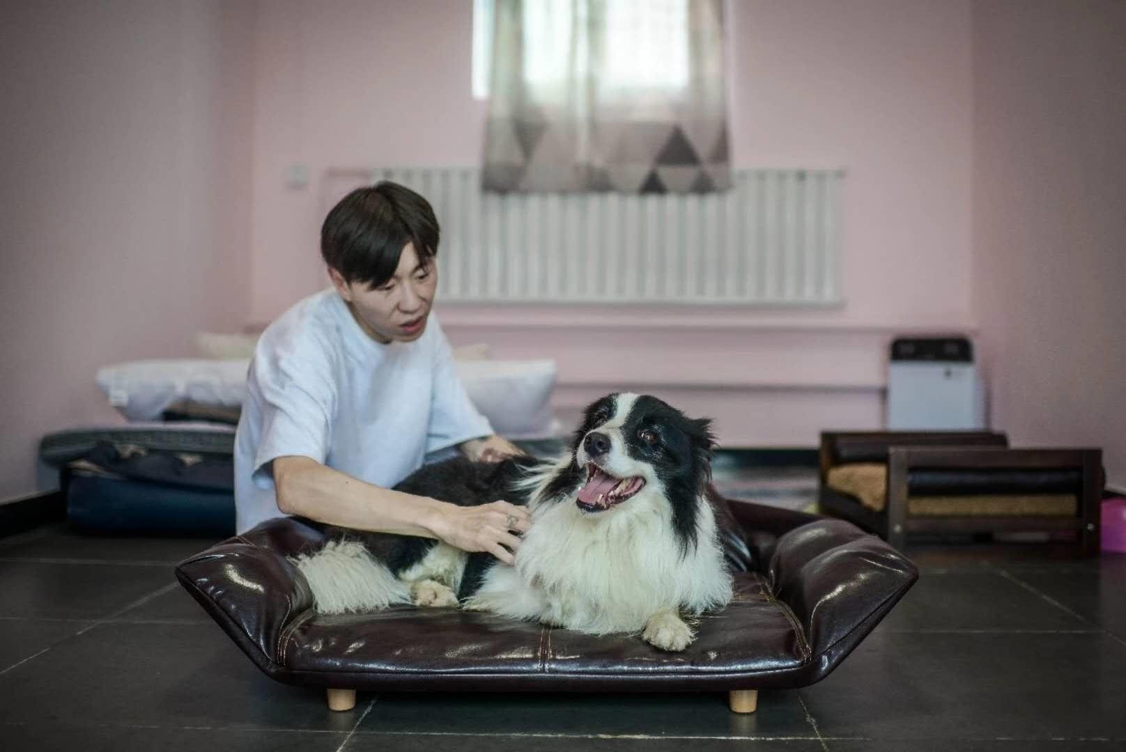 塞拉寵物 訂制寵物專屬寄養狗狗寄養服務寵物代養春節預約