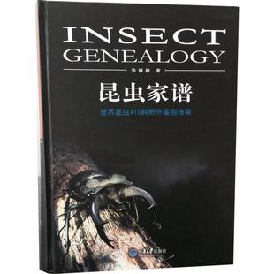 重慶大學出版社生物學書籍科普讀物科野外鑒別指南410世界昆蟲昆蟲野外生態照片余幅難得1500張巍巍精裝昆蟲家譜