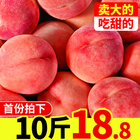 水蜜桃新鲜整箱10斤包邮5毛桃