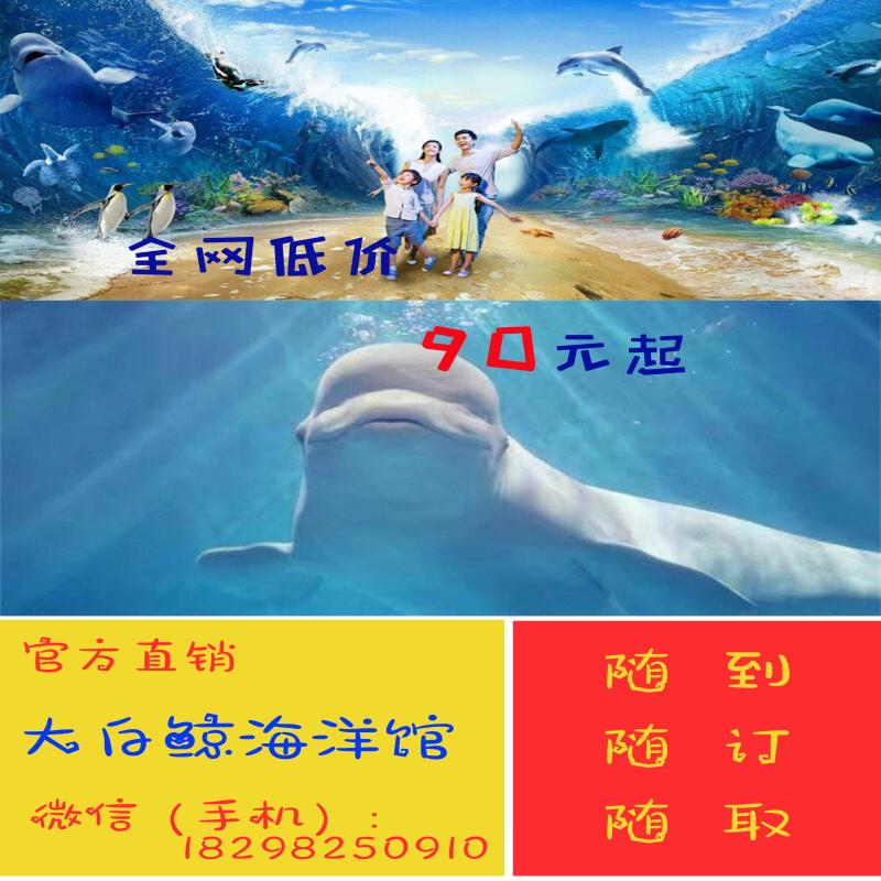 【 специальное предложение 】Заросший сорняками озеро новый цветущий присоединиться белоснежный кит океан парк океан дом мир ребенок университет сырье для взрослых билеты