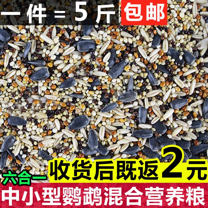 Таинственный ветер попугай смешивать зерна еда пион поперечный в наличии тигр попугай птица еда небольшой тип птица смешивать подача материал 5 джин пакет mail