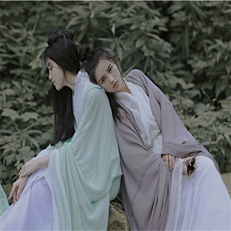 Traditional Costume Hanfu Wide Sleeve Flow Fairy Skirt with Collared Chest Costume Costume Fairy
