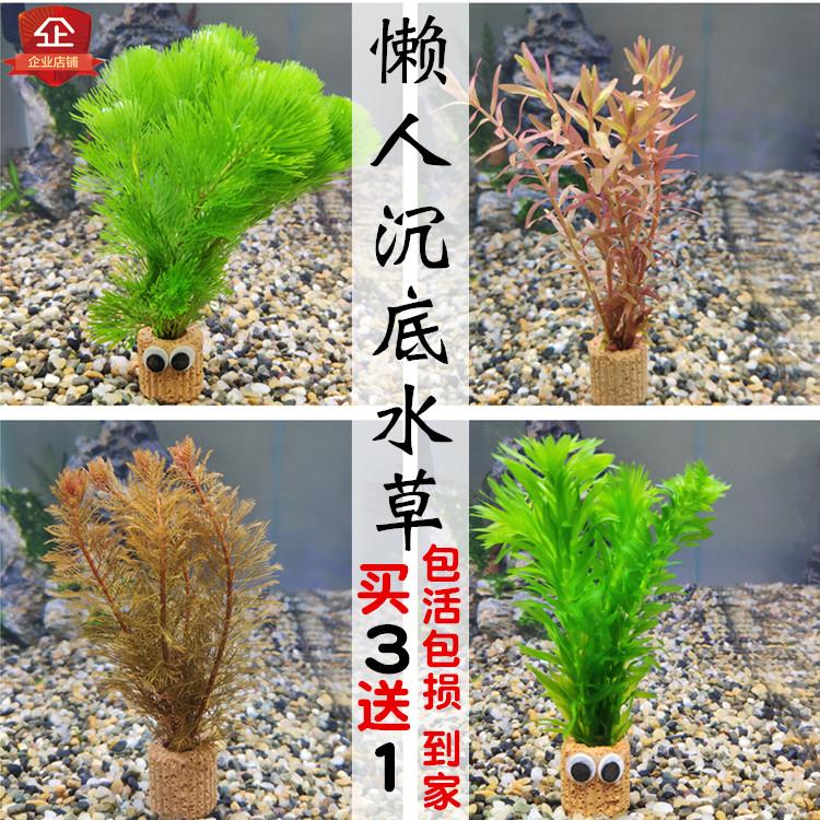 Наполнение для аквариума Артикул 566913222604