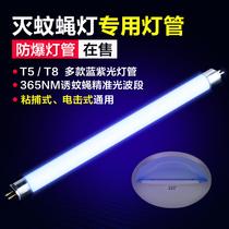 灭蚊灯管喜来乐粘捕式灭蝇灯餐厅商专用诱T56W8W蓝紫光灭蝇灯管