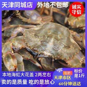 天津海虹花盖海蟹鲜活螃蟹大红爪赤甲公母石蟹海鲜梭子蟹同城闪送