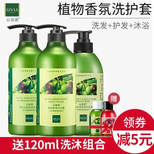 仙维娜橄榄去头屑洗发水沐浴露护发素套装官方正品持久留香控油