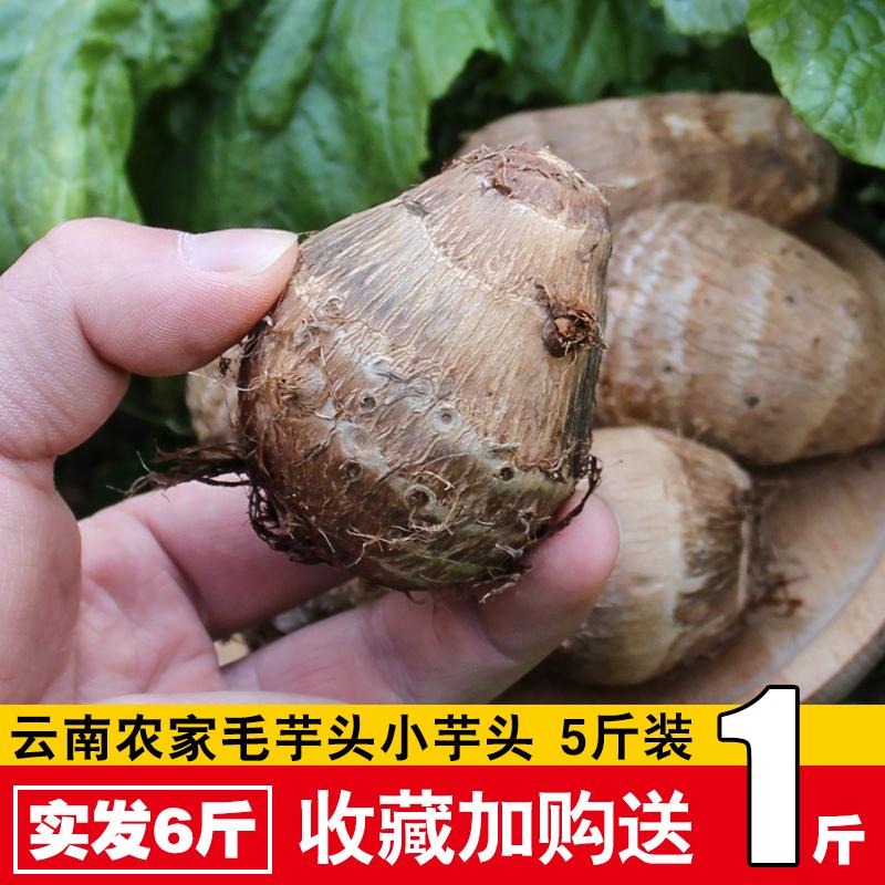云南芋头新鲜蔬菜小芋头粉糯香毛芋头芋艿5斤装农家自种现挖现发