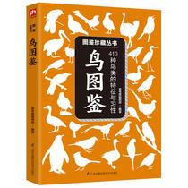 9787559632609北京联合出版有限公司鸟人追鸟记一女di三湘区域包邮飞跃高原正版现货
