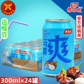 供应 300ml*24罐  果肉饮料荸荠饮料 烧烤火锅畅销 杨协成马蹄爽